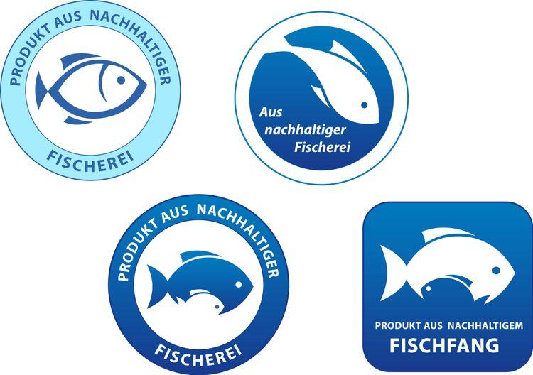 medium_Fischratgeber helfen: So geht dir nachhaltiger Fisch ins Netz