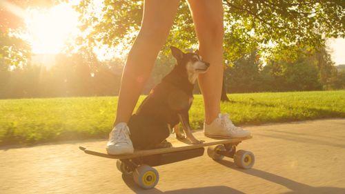 small_E-Skateboards: das können die neuen Elektro-Boards