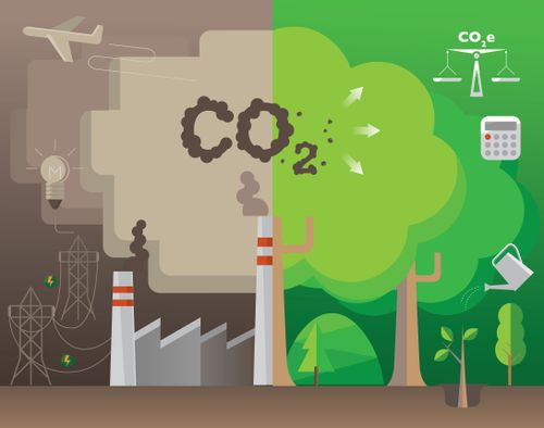 small_Klimafreundlich, -neutral oder -positiv: CO2-Kompensationsarten erklärt